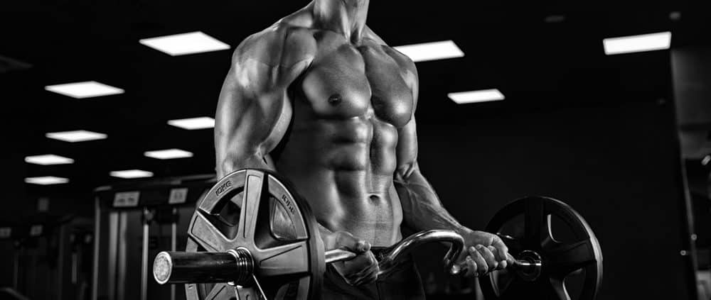 Muscle Building Simplified: A Guide For You