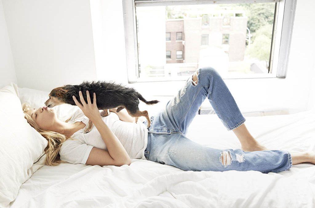 Women's Jeans: Top Brands Jeans 2019