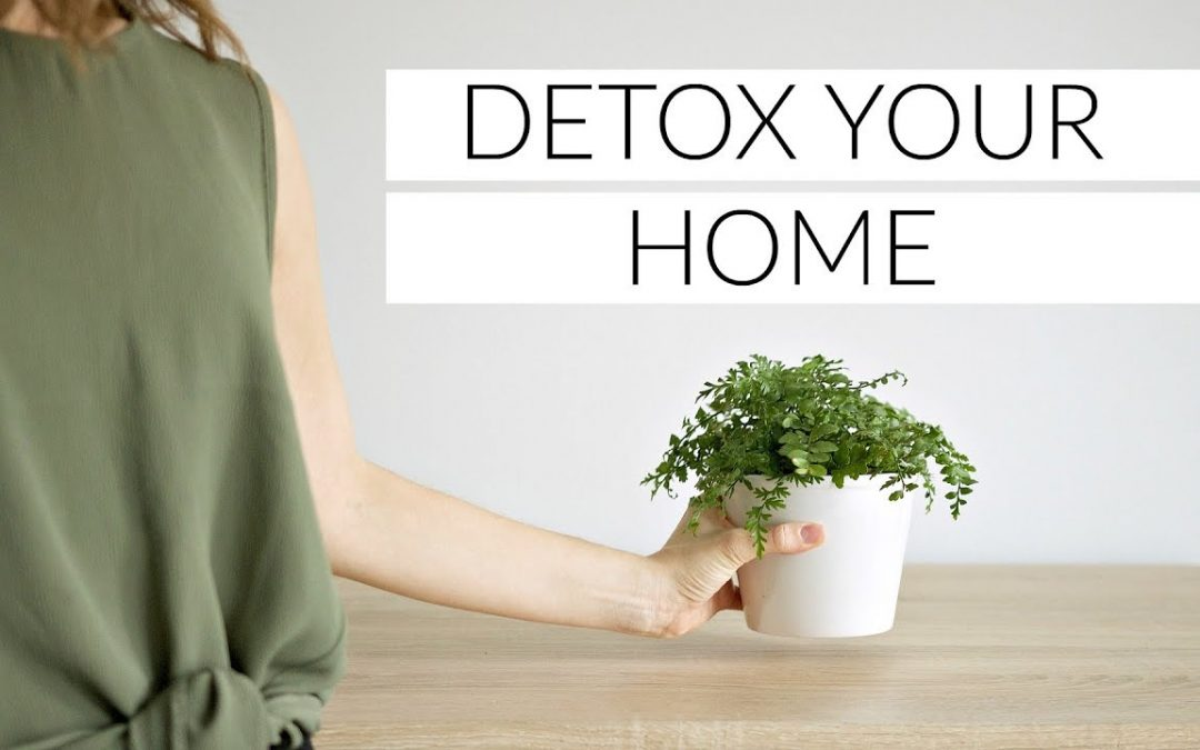 Ideas for a Detox in Your Home and Make It Incredible for the Beginning of the Year