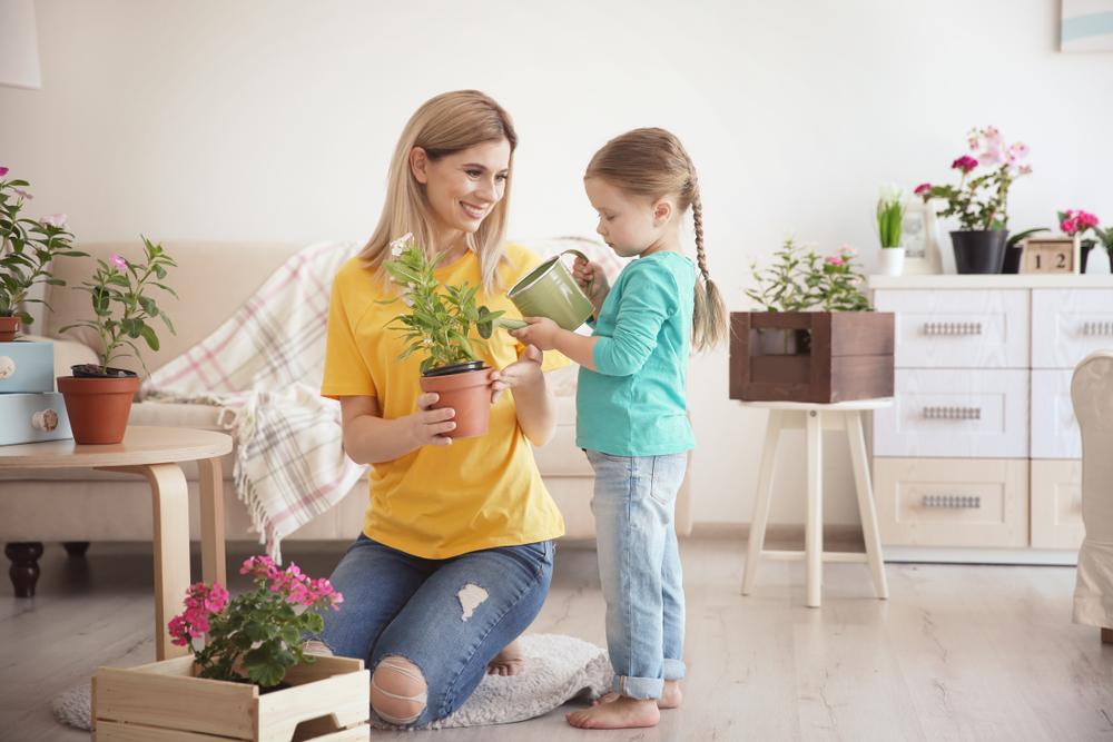 Growing an Indoor Garden