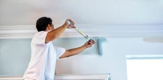 Why Hire a Professional Painter for Your Painting Needs