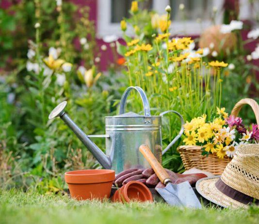 Garden Your Way